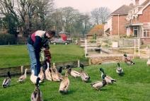 Cheriton Village Green 1992