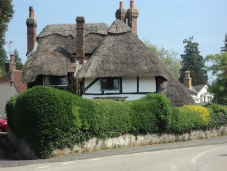 Old houses at West Meon